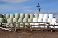Hay bales packed in white plastic Stock Photos
