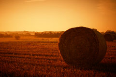 Hay Bales. Panorama taken In the evening at sunset Royalty Free Stock Images