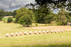 Hay bales in a pasture in  golden sunlight after a storm Stock Photo