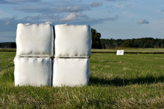 Hay bales in plastic Stock Images