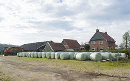 Hay bales in plastic Stock Photography