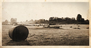Hay bales postcard Stock Photo