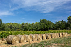 Hay bales in Provence, France Royalty Free Stock Images
