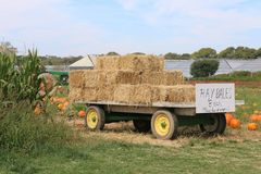 Hay bales in a pumpkin patch Royalty Free Stock Image