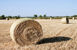 Hay bales - RAW format Royalty Free Stock Photography