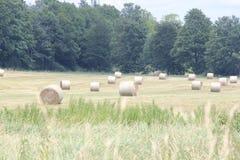 Hay Bales (Ronde) op Gebied stock afbeelding