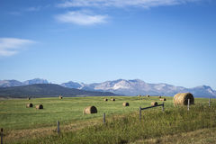 Hay bales scattered across the field with mountains in the background Stock Image