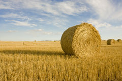 Hay Bales with shadow Stock Image