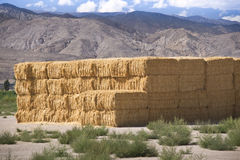 Hay Bales in the Sierras Royalty Free Stock Photography