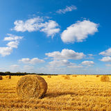 Hay bales sitting in a field Royalty Free Stock Photo