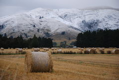 Hay Bales and snowbound Mountains Stock Photography