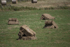 Hay bales square Stock Photo