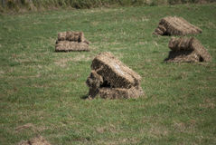 Hay bales square Stock Photos