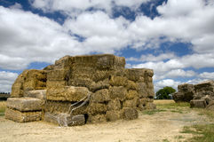 Hay bales stack Royalty Free Stock Images