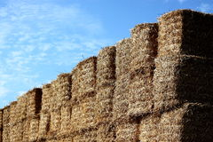 Hay bales stacked Royalty Free Stock Photos