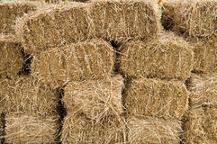 Hay bales stacked and drying Royalty Free Stock Photography