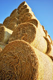 Hay bales stacked Royalty Free Stock Images
