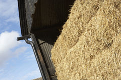 Hay Bales Stored In Barn Stock Images