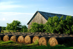 Hay Bales Stored Outdoor At Sunset Royalty Free Stock Photos