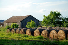 Hay Bales stored outdoor at sunset Stock Photo