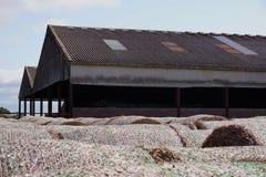 Hay Bales Stored Outside per den Pole ladugården Arkivbilder