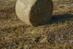 Hay  bales on the stubble field in detail. A Hay  bales on the stubble field in detail Royalty Free Stock Photos