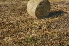 Hay  bales on the stubble field in detail. A Hay  bales on the stubble field in detail Royalty Free Stock Images