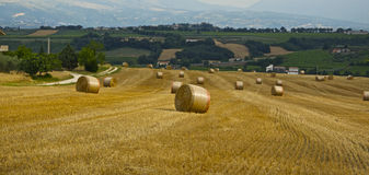 Hay bales. Summer scene in Abruzzo, Italy Royalty Free Stock Photography
