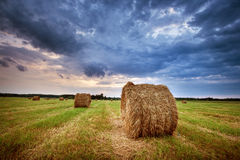Hay bales at sunset Stock Images