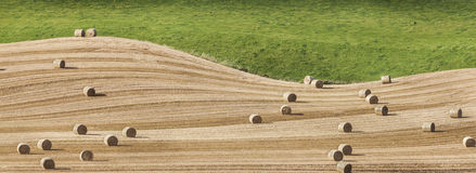 Hay-bales at Towie in Scotland. Stock Image