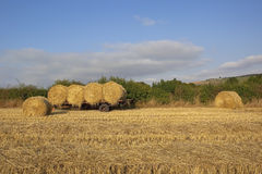 Hay bales with trailer Stock Image