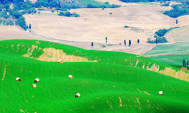 Hay bales in Tuscany Stock Photography