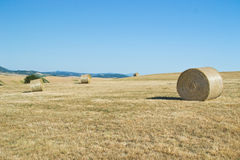 Hay bales in Tuscany (Italy) field Stock Images