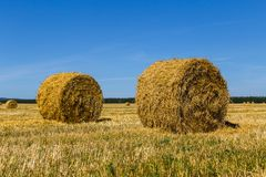 Hay bales. Two round hay bales on the field after haymaking Stock Photo