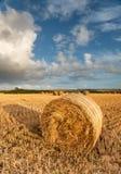 Hay Bales Stock Image