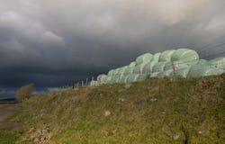 Hay bales under stormy skies Stock Photo