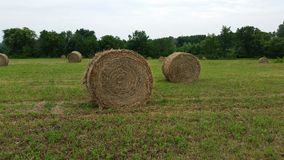 Hay Bales van Kansas Royalty-vrije Stock Foto