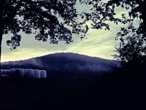 Hay Bales van Mistige Weide royalty-vrije stock afbeeldingen