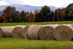 Hay Bales in Vermont Royalty Free Stock Images