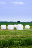 Hay bales and windturbines. On farm Royalty Free Stock Photography