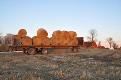 Hay bales in winter Stock Images