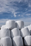 Hay bales wrapped Stock Photos