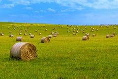 Hay bales 1 Royalty Free Stock Photo