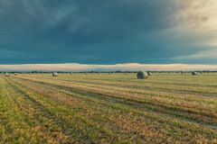 Hay balesin the countryside Northern Italy Stock Photo