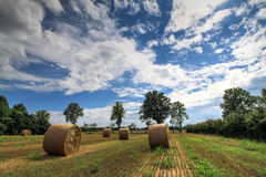 Hay balex Stock Photos