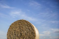 Hay ball against the sky background royalty free stock photography