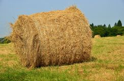 Hay ball in a meadow. Close-up view Royalty Free Stock Images