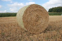 Hay ball / Straw ball with a sky Royalty Free Stock Photos
