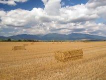 Hay balles in Liptov, Slovakia royalty free stock images