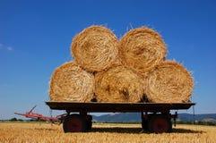 Hay balls Stock Image